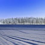 北海道札幌の冬の子供の遊び場に最適な5つ施設を紹介!冬休みにも!