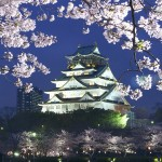 お花見の時期は?大阪で子供が喜ぶ屋台の出るスポット2016