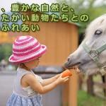 ゴールデンウィークGW2017子連れで行ける穴場スポット11選!関西編