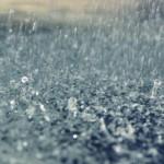 走り梅雨とはいつ頃の雨のこと?意味や語源、俳句の季語にも!