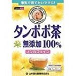 たんぽぽ茶は飲み過ぎによる副作用に注意!妊活に人気の種類を紹介!